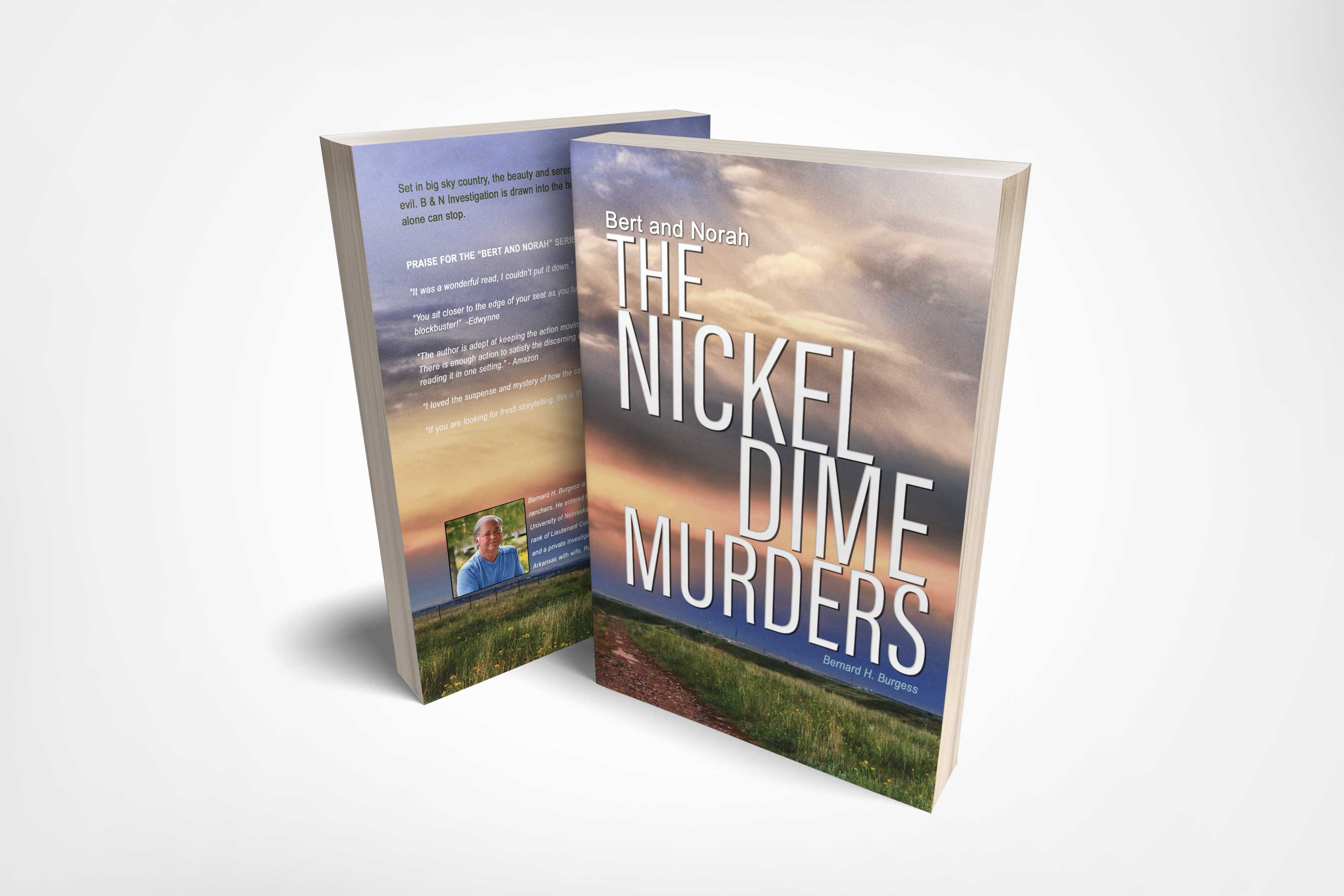 <span>Graphic Design, Book Cover, Branding/Identity</span>The Nickel Dime Murders: Book Cover Design